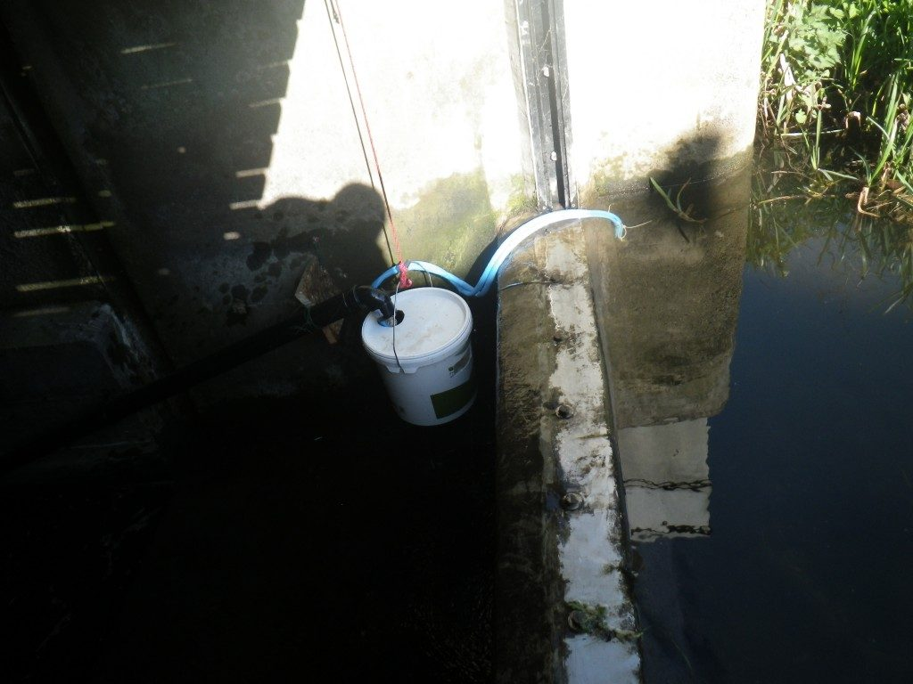 The elver trap finally installed and waiting (photo credit: Jonah Tosney)